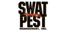 Swat Pest Management
